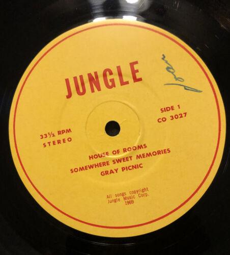 JUNGLE   SELF TITLED LP   MEGA RARE ORIG     69 PRIVATE PSYCH LP