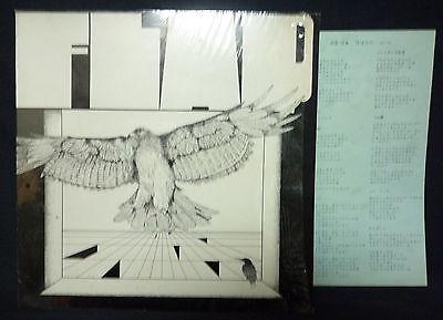 FLAP PSYCH FOLK ROCK JAPAN ORIG private LP POKORA 6  rare psychedelic acid folk